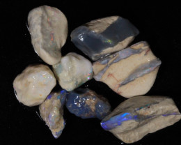 50ct  -#7  -  Gamble Rough from Lightning Ridge [23797]