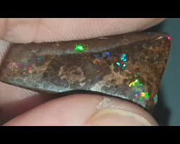 10.3 Ct Boulder Opal from Winton (J)