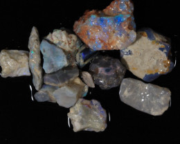 50ct  -#8  -Beginners Rough from Lightning Ridge [23897]