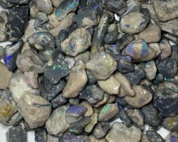 BLACK + GIFT; 600 CTs of Lightning Ridge Rough Opal#1484