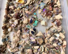 500 Grams of Fossil Nobby Lightning Ridge rough