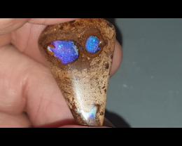 41.9 Ct Boulder Opal from Yowah