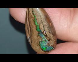 19.5 Boulder Opal from Yowah