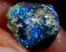 2.53cts Australian Lightning Ridge Opal Rough / WR135