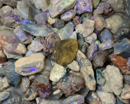 ROUGH OPALS PARCEL; 1000 CTs of Lightning Ridge Rough Opal #1983