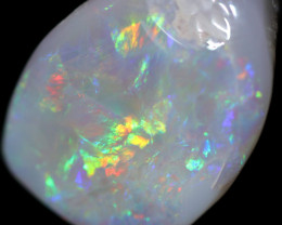 19.40 Cts Shell Patch Opal-Out Back Opal Hunters  OPJ 2831