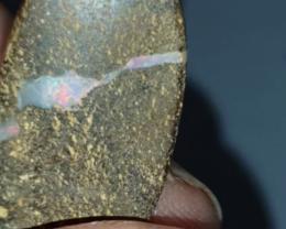 11.33 Ct Boulder opal from Winton (JR)