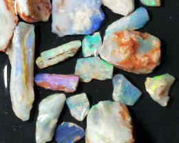 106 Cts Opalized  Wood Fossils With Color DN-427