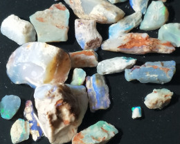 105 Cts Opalized  Wood Fossils With Color DN-432