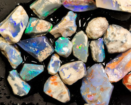 Rough Opal Lot 156.50 cts 23 pcs Black Opals Lightning Ridge BORA051219