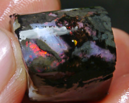 54.35 CT Beautiful Indonesian Wood Fossil Opal Rough