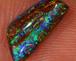 1.25ct 11x5mm Yowah Boulder Opal Wood Fossil [LOB-3030]