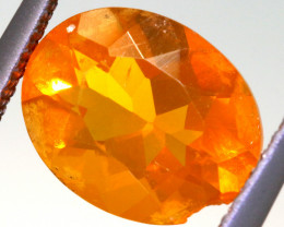 2.03 CTS MEXICAN FIRE OPAL STONES  FOB -2067
