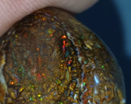 35 Ct Boulder opal from Yowah