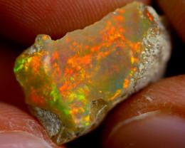 7cts Ethiopian Welo Rough Opal / WR580