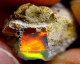 8cts Ethiopian Welo Rough Opal / WR630