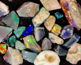 Rough Opal Lot 100.20 cts 26 pcs Black Opals Lightning Ridge BORA221219