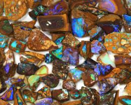 1000ct Natural Boulder Yowah Opal Rough Parcel [BRP-116]