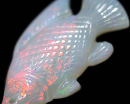 5.88 CTS OPAL CARVING OF A FISH [SEDA2958]