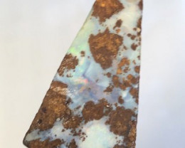 Boulder Opal Rough, Ready to be cut and Polished - Ref   2003