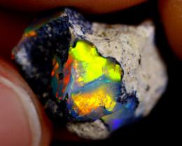 6cts Ethiopian Welo Rough Opal / WR769