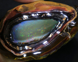 424.20 -CTS*OPAL GROTTO*  OLD COLLECTION KOROIT OPAL  NUT INV-1465