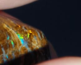 11.5 Ct Boulder Opal from Opalton