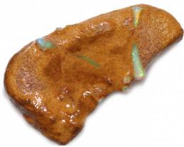 30.75 CTS DENTALIUM  SPECIMEN IN HOST ROCK-ELEPHANT TUSKS [S-FOSSIL121]