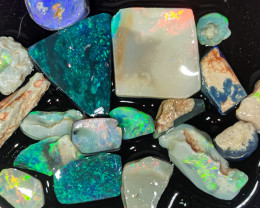 Rough Opal Lot 56.05 cts 18 pcs Black Opals Lightning Ridge BORE180120