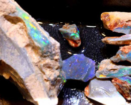 400-CTS  BLACK OPAL ROUGH  PARCEL L. RIDGE  DT-A778