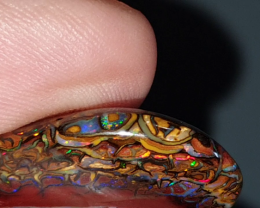 38 Ct Yowah nut Opal from Yowah