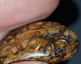 Beautiful Yowah nut Opal from Yowah