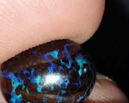 5.5 Ct Boulder Opal from Koroit