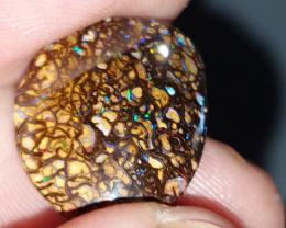 Gemmy Boulder Opal from Yowah