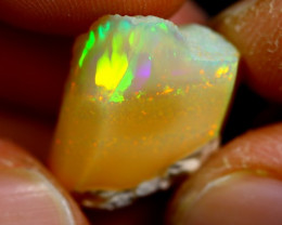 11cts Ethiopian Welo Rough Opal / WR1032
