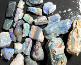 117.60Cts Opalized  Wood Fossils With Good Color NATP-40