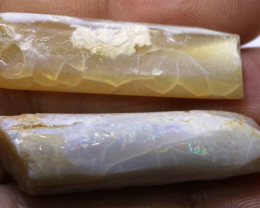 36.1 CTS FOSSIL BELEMNITE PARCEL  FO-164