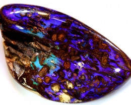 210CTS Collectors Australian Boulder Opal WOOD FOSSIL C-786