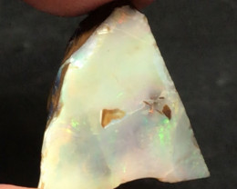 Boulder Opal Rough, Ready to be cut and Polished Ref2022