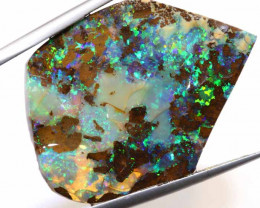 33.60 CTS  - BOULDER OPAL ROUGH DT-6994