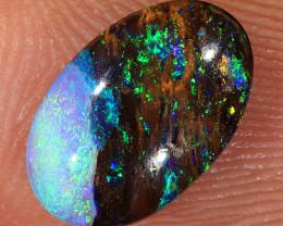 1.25ct 10.5x6.7mm Yowah Boulder Opal Wood Fossil [LOB-3129]