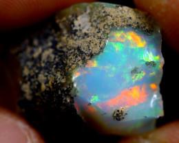 16cts Ethiopian Welo Rough Opal / WR1341