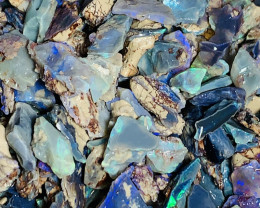 570 CTs of Lightning Ridge Rough Opals #3276