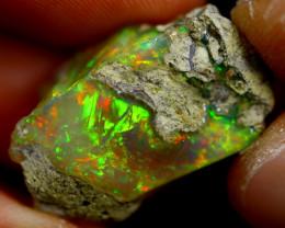 16cts Ethiopian Welo Rough Opal / WR1367
