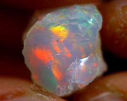 7cts Ethiopian Welo Rough Opal / WR1371
