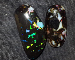 30.00 CRT 2PCS BEAUTY PLAY COLOR INDONESIAN OPAL WOOD FOSSIL