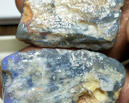 115.OCts Opalized  Wood Fossils Matching Pieces One with Color BB-631