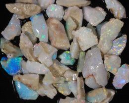 70ct #7 Rough Opal from CP  [25713]