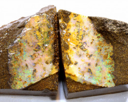170CTS  - BOULDER OPAL ROUGH SPLITS DT-7524