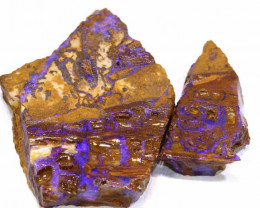 31CTS  -  BOULDER OPAL WOOD  ROUGH 2PCS PARCEL DT- 7534